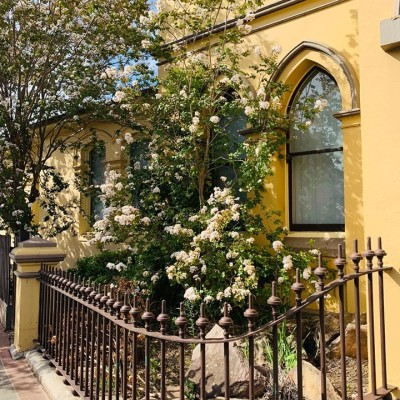 Historic Picton Walking Tour